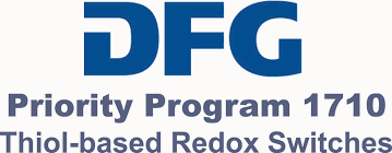 dfg_priority_program_1710.png